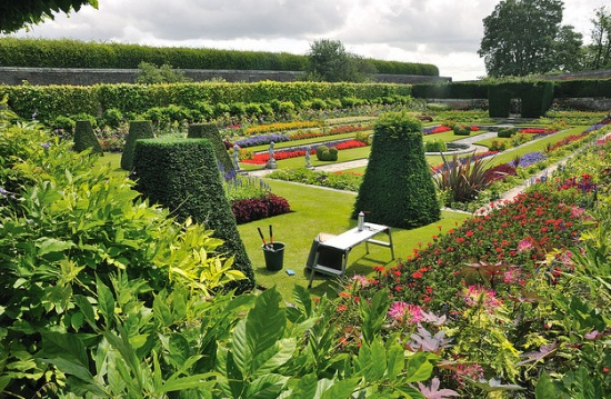 парк дворца Хэмптон-корт
