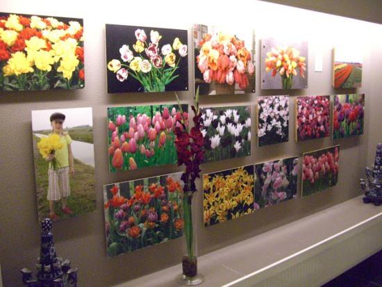 Внутри музея тюльпанов