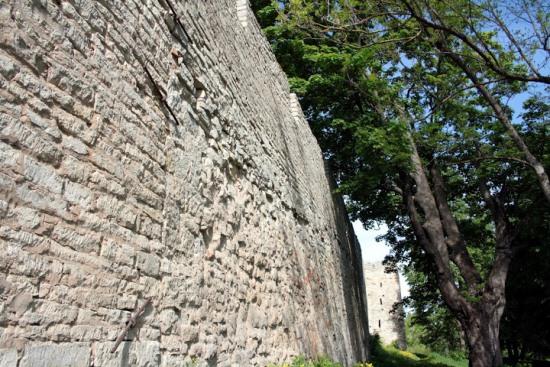 Стена Порховской крепости