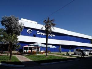 Sochi Discovery World Aquarium – океанариум в Адлере