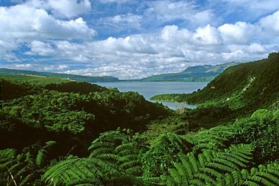 Озеро Таравера в Новой Зеландии