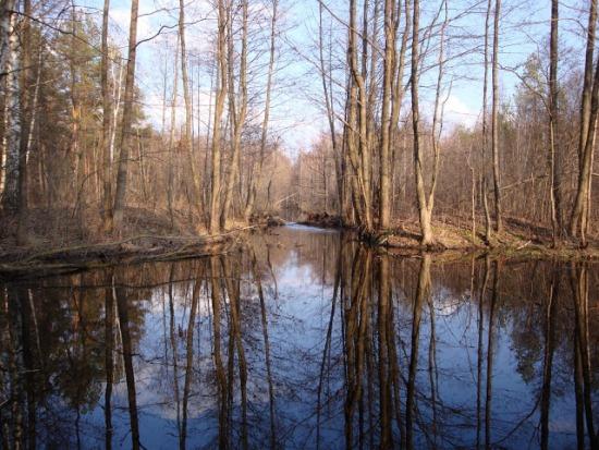 Браславские озера в Белорусии