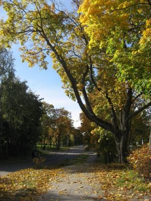 В окресностях города Приозерск