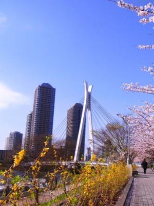 Токио весной
