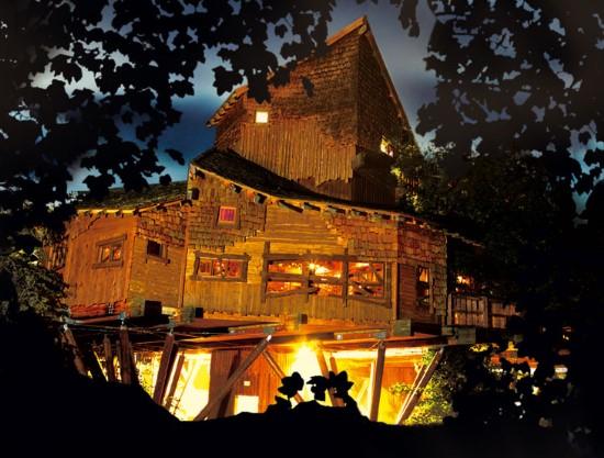 Кафе-ресторан площадью 560 квадратных метров