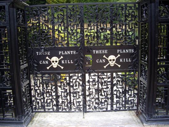 Черные ворота, вход в зону с ядовитыми растениями